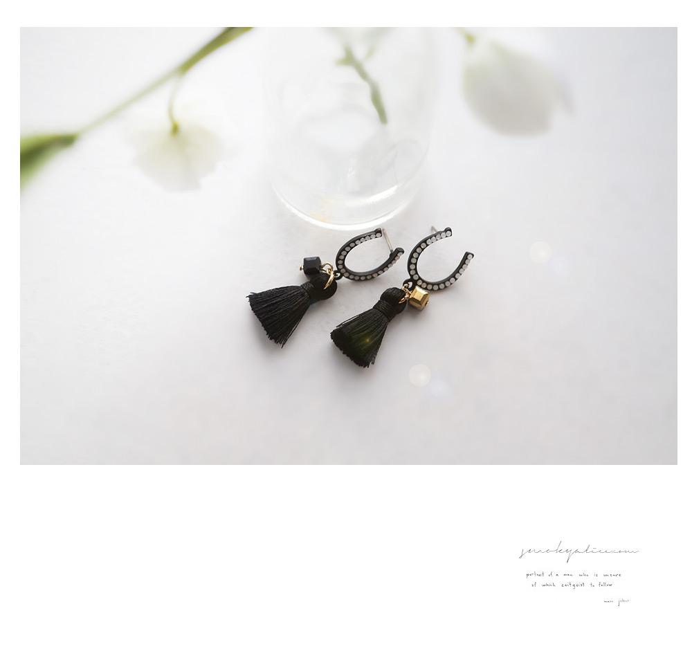 [ 4xtyle ] Horseshoe Tassel耳环、一种颜色