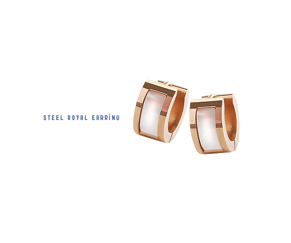[ 4xtyle ] [STAINLESS STEEL] TIFFANI ROYAL EARRING